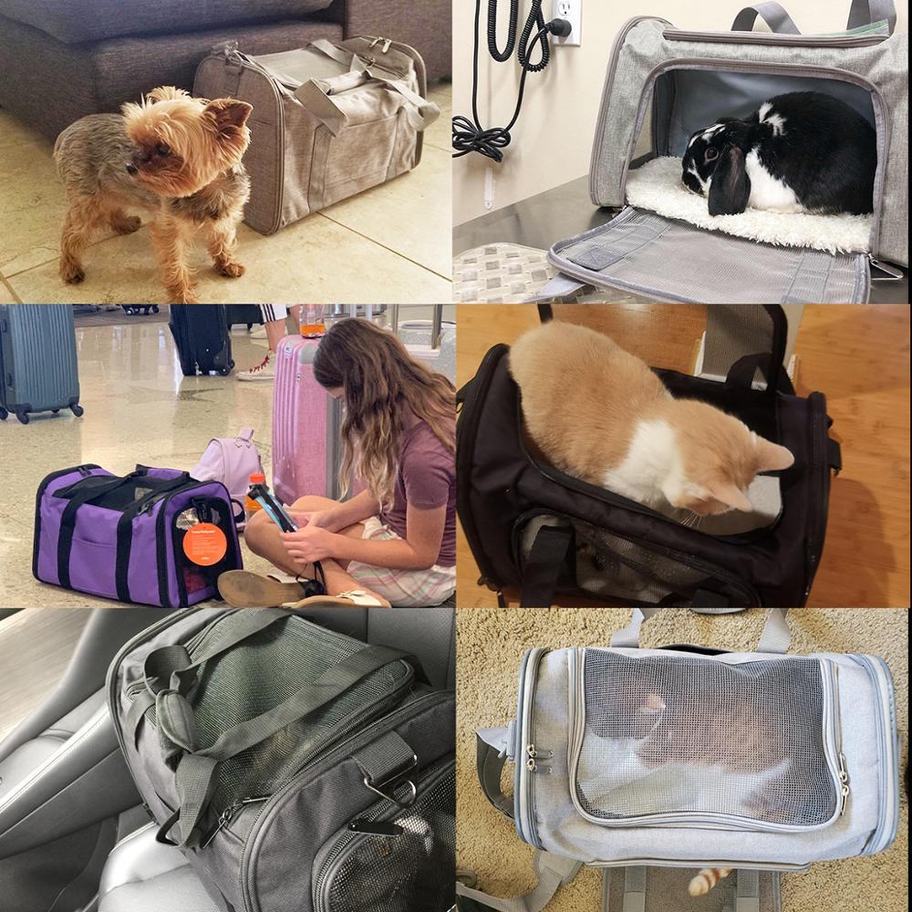 Sac À Dos De Voyage Pour Animal De Compagnie
